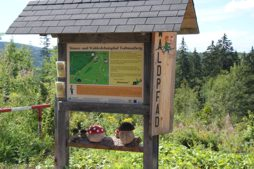 Schwarzwald Ausflugsziele